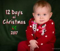 12 Days of Christmas Baby Photos
