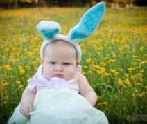 Meet the Grumpy Easter Bunny (Photo Shoot)